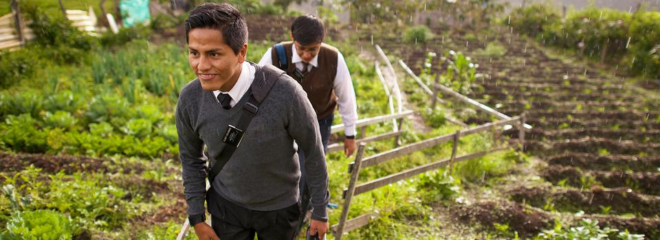 Missionaries in the field